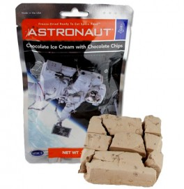 Astronaut Double Chocolate Chip Ice Cream